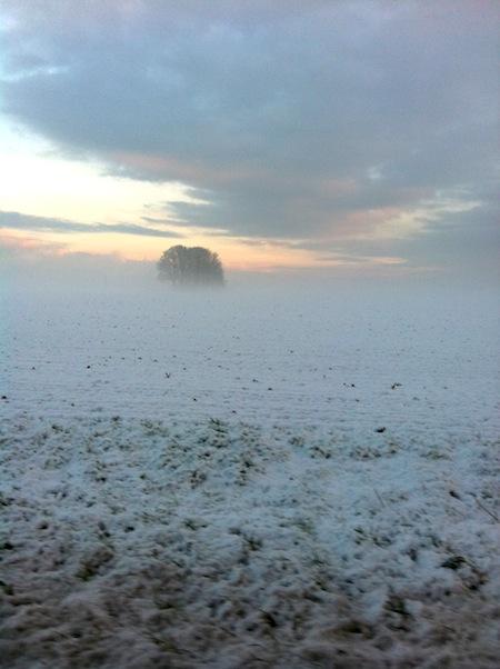 Der Winter in Rommerskirchen